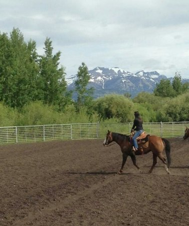 Introduction To Rodeo: Practicing our barrels