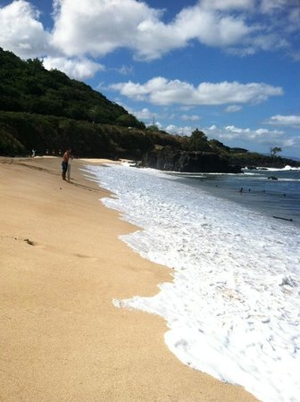 Waimea Bay: My fav pic