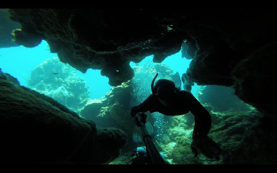 Roatan Eco Tour. Snorkeling Tours: Diving in Blue Channel