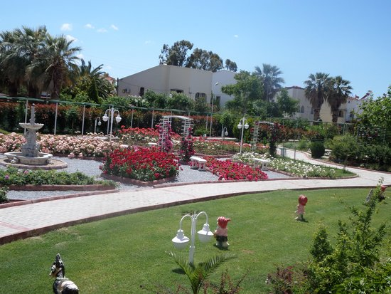 سينتينوس هوتل: Beautiful gardens