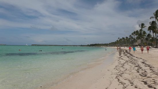 Barcelo Bavaro Beach - Adults Only : Vista playa