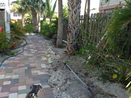 #1 Island Hideaway: Side yard of Oasis unit