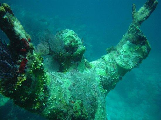 Silent World Dive Center: Shallow Christ