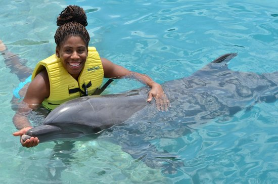 Dolphinaris Cozumel: Touching them:)