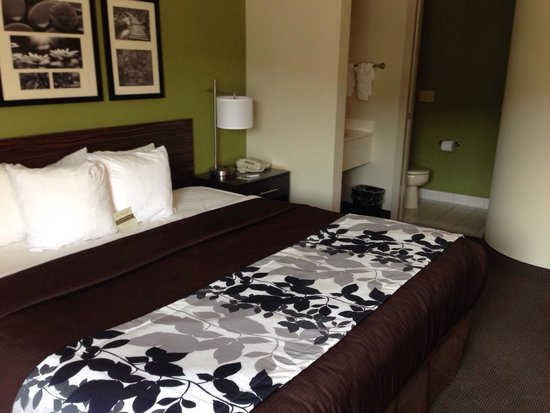 Sleep Inn: Newly renovated king room.
