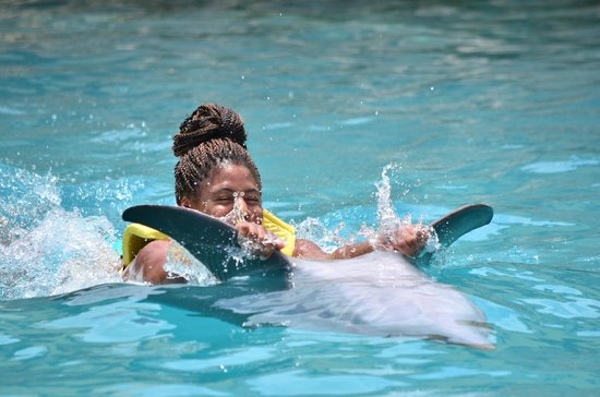 Dolphinaris Cozumel: Taking a ride