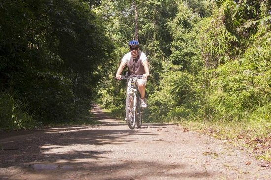 Bike and Tours: Biken im Regenwald