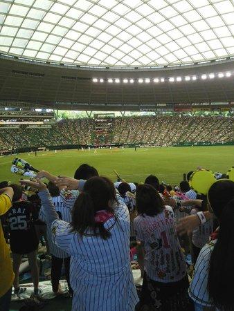 Seibu Prince Dome : 客席