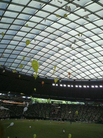 Seibu Prince Dome : ドーム屋根