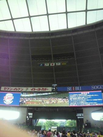 Seibu Prince Dome : グランド
