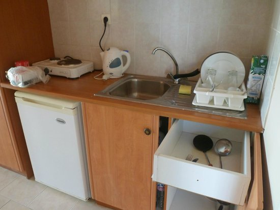 Plessas Palace Hotel: kitchenette facilities in the room (302)