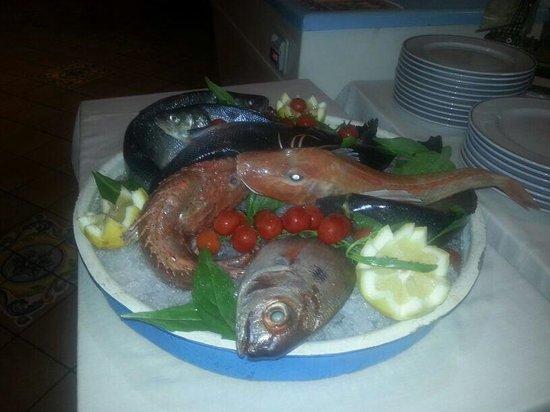 Sorriso Thermae Resort & Spa: Stasera pesce fresco!!