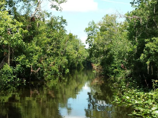 Blue Heron River Tours: Entering one of the old channels