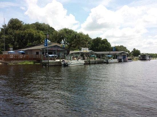 Blue Heron River Tours: On the St. John's River