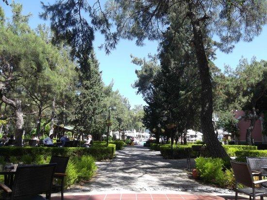 Grand Yazici Club Turban: doorkijkje richting zwembad