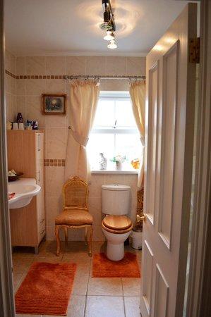Ballybay, Ιρλανδία: Bathroom