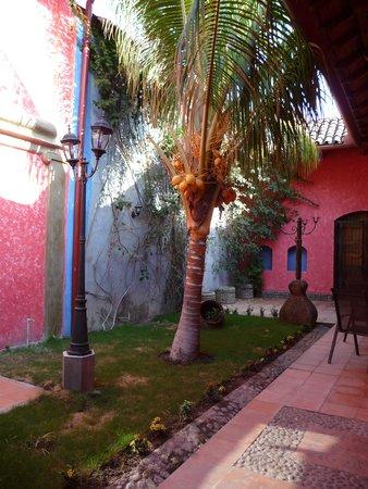 Hotel Casa del Consulado: Our Private Garden