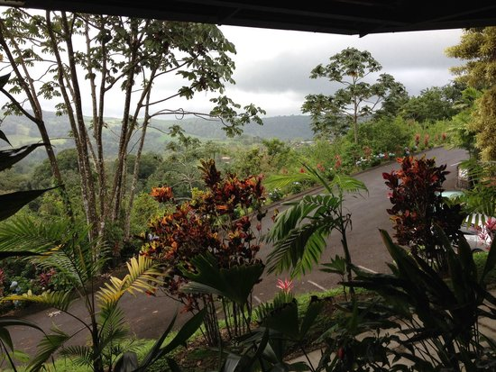Arenal Kioro Suites & Spa: View from the lobby while we enjoyed our complimentary welcome drinks.