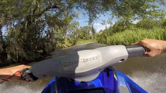 Island Adventure Watersports: Looking for Alligators