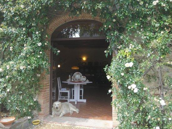 Castello di Spaltenna Exclusive Tuscan Resort & Spa: территория отеля