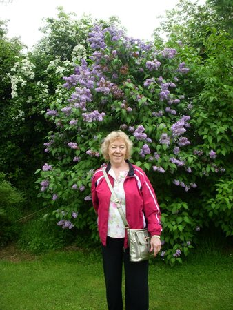 Newlands Lodge: Lilac's in Bloom