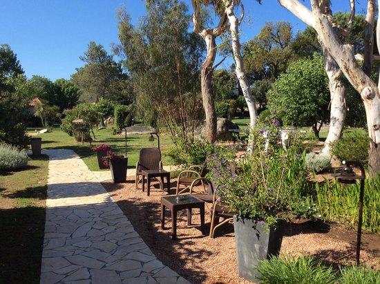 Hotel San Giovanni : petite partie du jardin