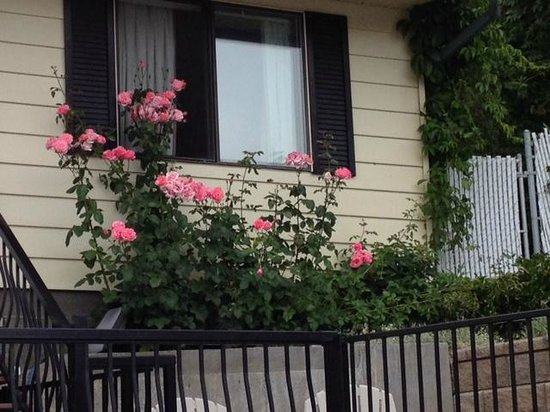 Lakeview Motel & Suites: Beautiful plants and view of motel