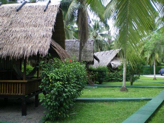 Coco Loco Lodge: Coco loco