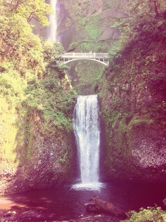 Columbia River Gorge National Scenic Area : My son took this