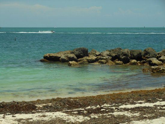 Fort Zachary Taylor Historic State Park: Decent shore snorkeling