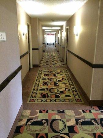 Country Inn & Suites By Carlson, Dalton : 4th floor Hallway
