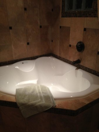 Chehalem Ridge Bed and Breakfast: The very large, jetted tub