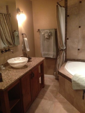 Chehalem Ridge Bed and Breakfast: The large, well appointed bathroom