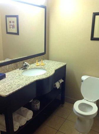 Country Inn & Suites By Carlson, Dalton : nice clean bathroom