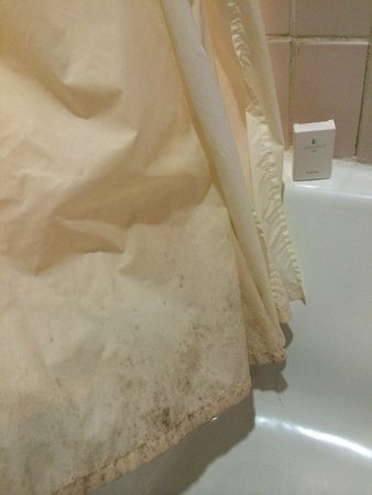 Pueblo Bonito Emerald Bay : Hongos en las cortinas del baño