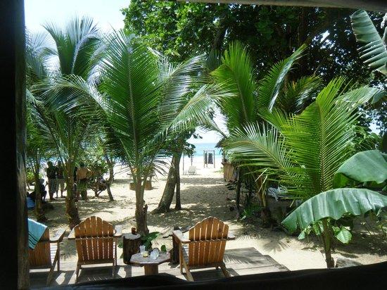 Meeres-Nationalpark Insel Bastimentos (Parque Nacional Marino Isla Bastimentos): desde el restaurante