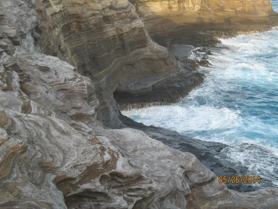 Spitting Cave of Portlock : Spitting Cave - Low Spit Sorry I Missed the Big One