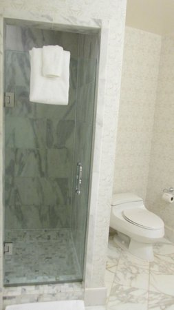 Willard InterContinental Washington: Rm 915 shower (deeper than it looks) and toilet