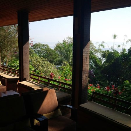 Orchids Safari Club: view from bar