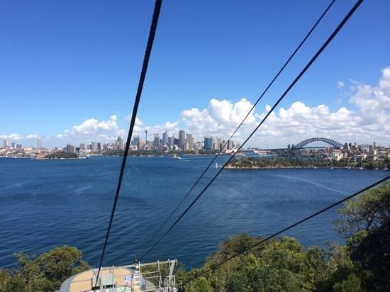 Taronga Zoo: gondola ride with a view