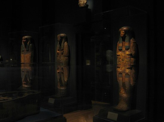 Michael C. Carlos Museum : View of the MummyExhibit- Carlos Museum