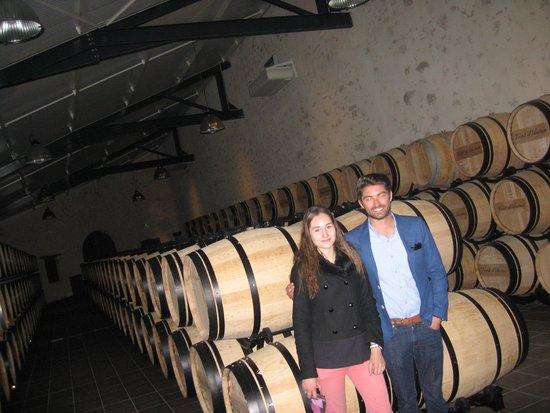 Bordovino Wine Tasting Day Tours : Chateaux
