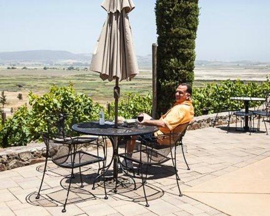 Viansa Winery and Italian Marketplace: Patio