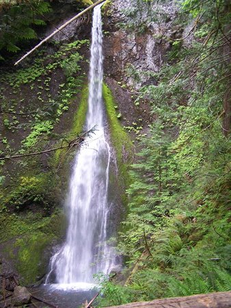Marymere Falls 90 ft drop