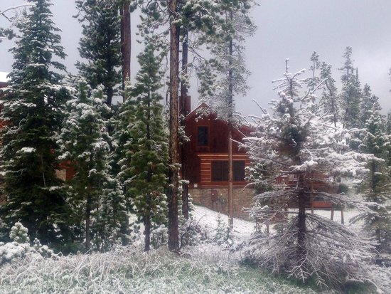 Powder Ridge Cabins : Yes , this is June!
