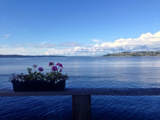 Duke's Chowder House: View from the deck