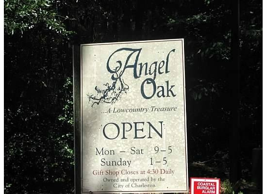 Angel Oak Tree : Hours when open