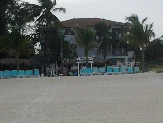 Cedar Cove Resort & Cottages : beachside view