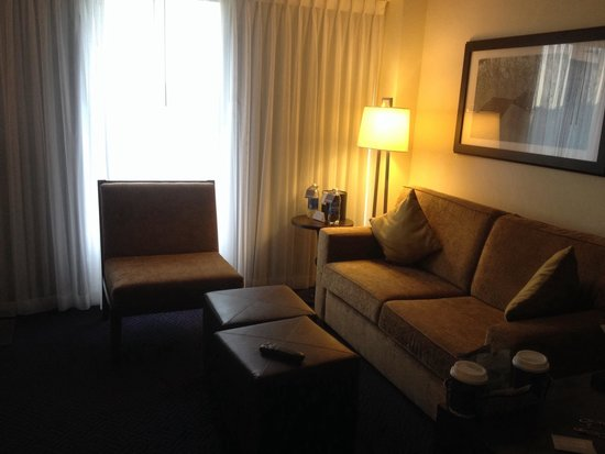 Hyatt Regency Lisle near Naperville: Sitting area