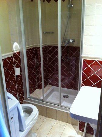Hotel Britannique : Tiny but well-designed bathroom